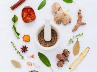 plusieurs especes des herbes comme des produits naturels pour bander