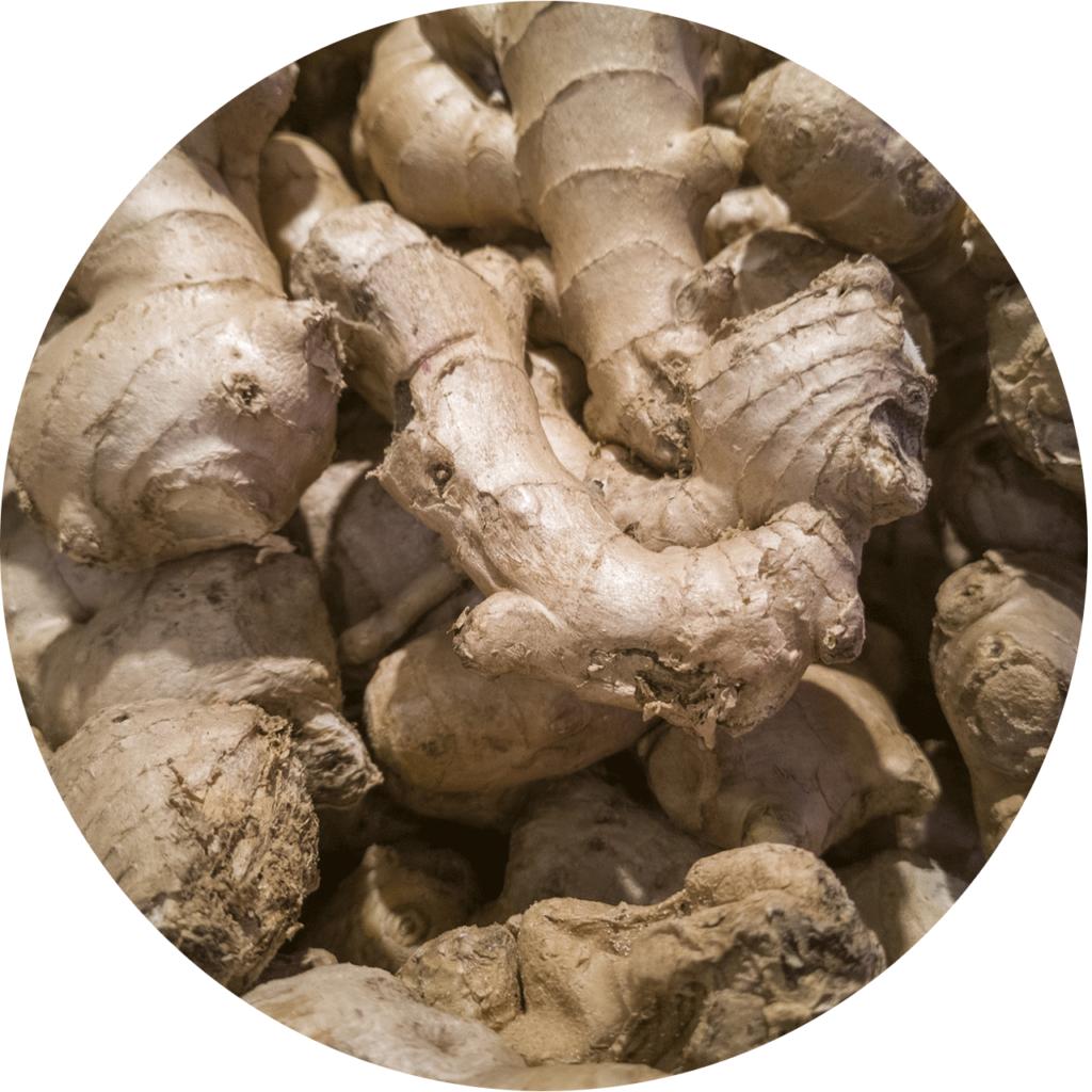 gingimbre n'est pas seulement contre d'un réfroidissement mais aussi un aphrodisiaque