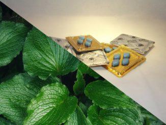 les plants et les médicaments presentent les stimulants sexuels